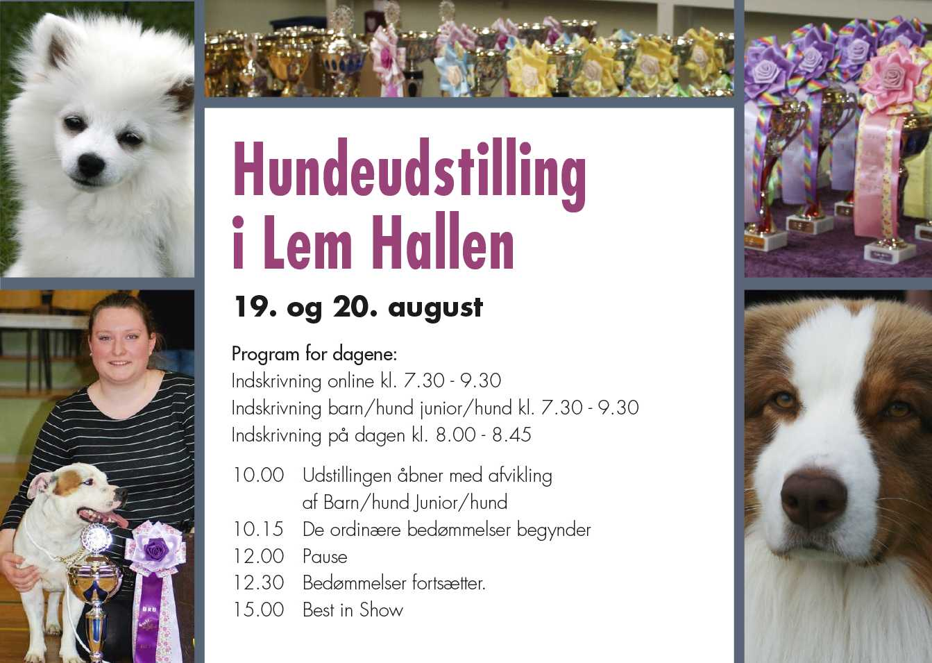 Hundeudstilling i Lem Hallen